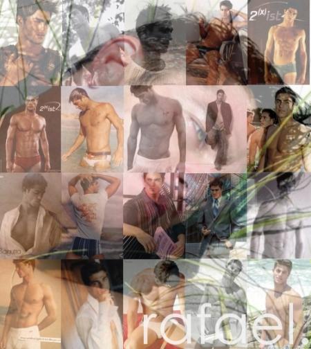 rafael collage sig